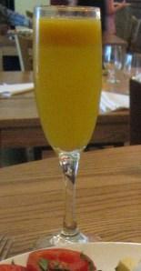 Paparazzi bottomless mimosa