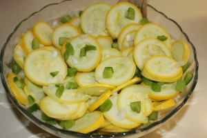 Mix the squash, onion, green pepper and celery