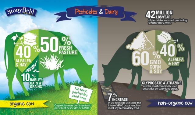 infographic-KTJ-10-21