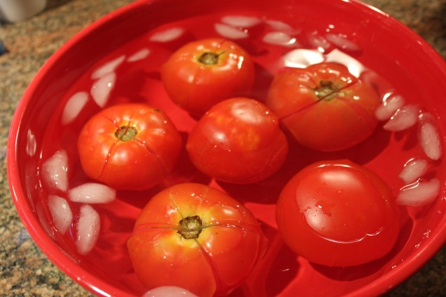Place tomatoes in icebath