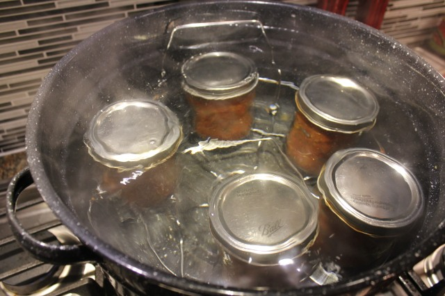 Process Salsa in water canner
