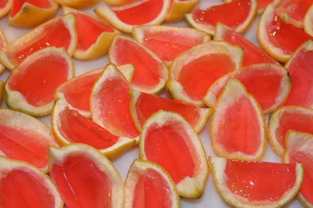 Kel's Raspberry Lemonade Gelatin Shots